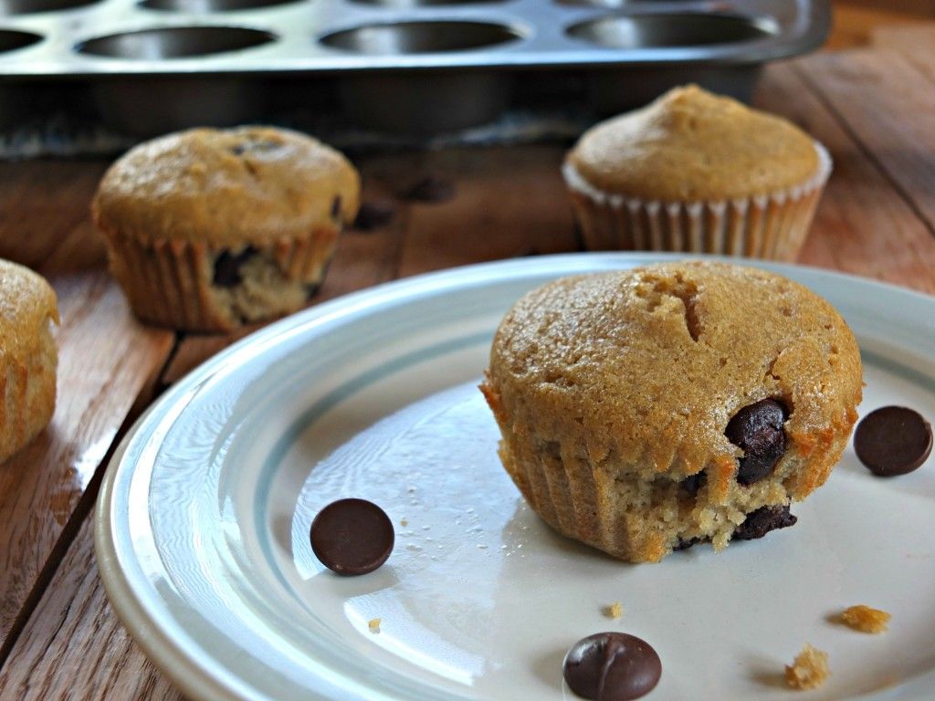 Paleo Chocolate Chip Muffins –  Tropical Traditions Coconut Oil Review