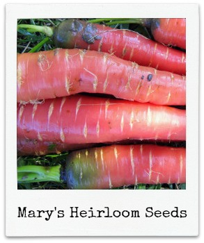 Mary's Heirloom Seeds Giveaway!