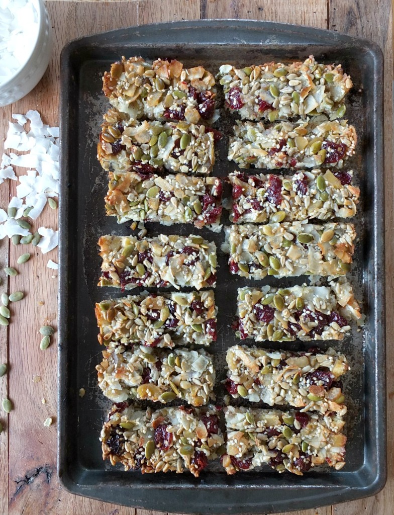 "Coconut Cherry Paleo ""Granola"" Bars 