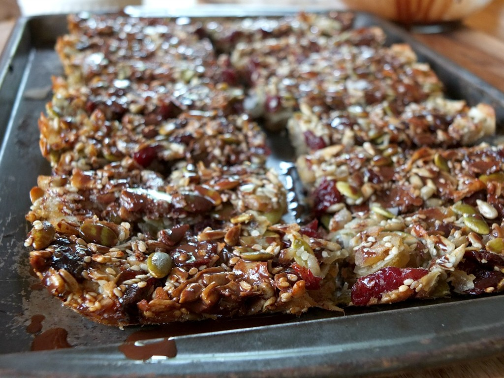 Cherry Chocolate Granola Bars – guest post on Empowered Sustenance
