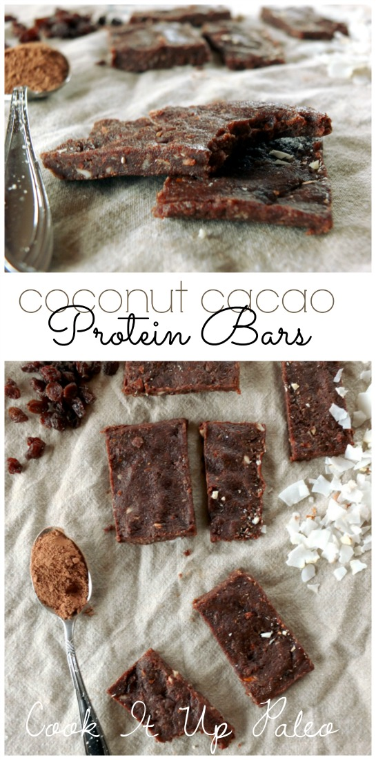 Coconut Cacao Protein Bars | Cook It Up Paleo
