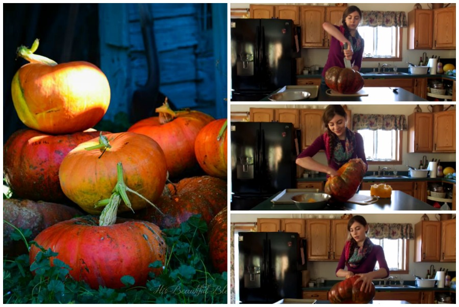 How to Cook a Pumpkin {video}