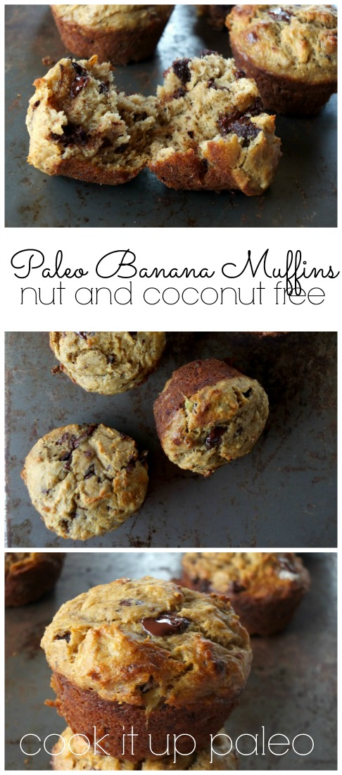 Paleo Banana Muffins with Chocolate Chunks (nut and coconut free) | Cook It Up Paleo