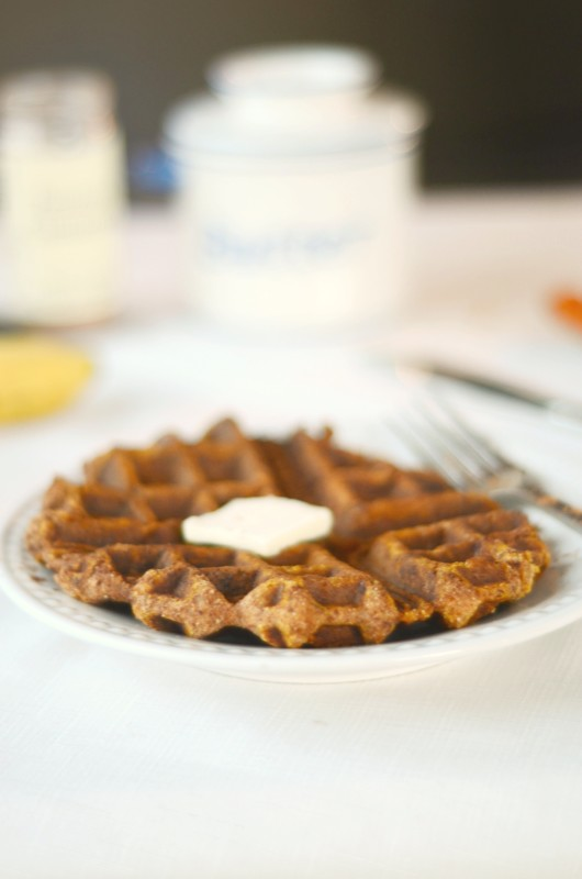 Paleo Pumpkin Waffles - nut free, single serve