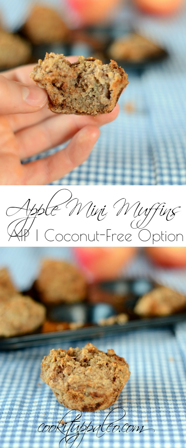 AIP Apple Muffins