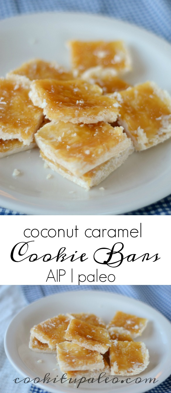 AIP Cookie Bars